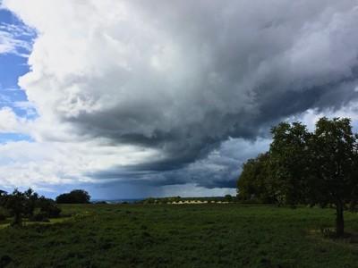 Die Jahreszeiten - Oratoriumkoor Heiloo